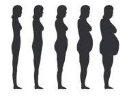 5 vrouwenbuik