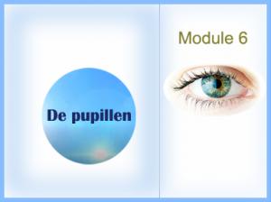 Module-WP6