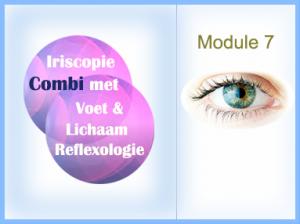 Module-WP7